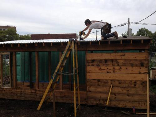 Our beautiful and sturdy weatherized chicken coop -- it withstood Superstorm Sandy!